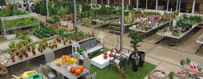 Horto do Campo Grande - Centros de Jardinagem