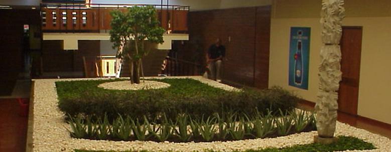 Horto do Campo Grande - Manutenção de Plantas de Interior