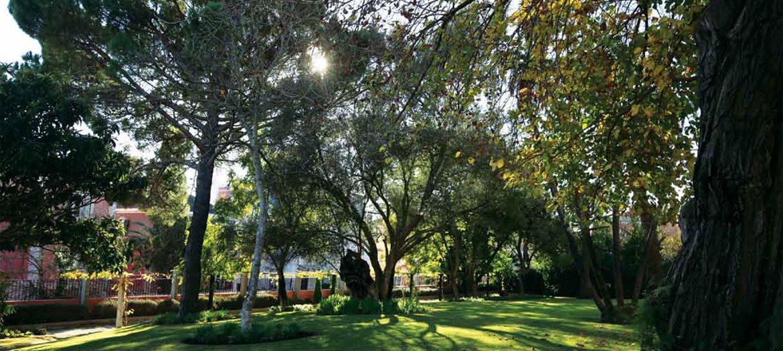 Horto do Campo Grande - Manutenção de espaços verdes
