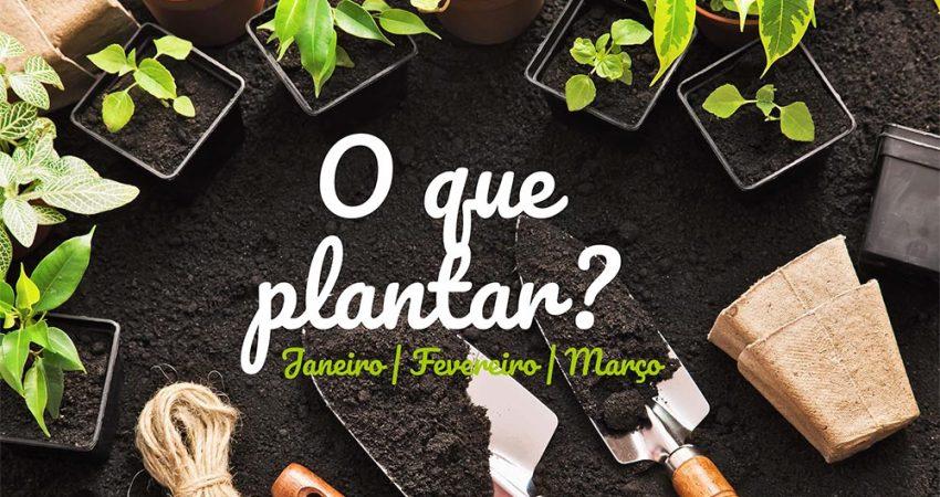 Horto do Campo Grande - O que plantar/semear no Inverno