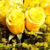Ramo rosas amarelas