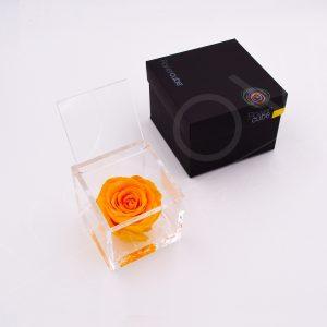 flowercube_amarela
