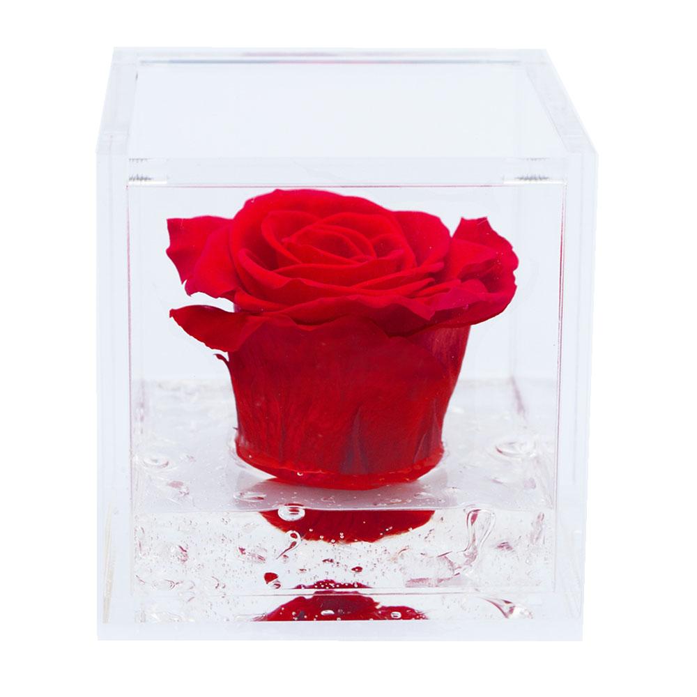 Flowercube – Rosa Preservada no Cubo (8x8)