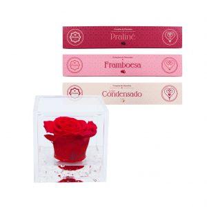 FlowerCube + Coleção Corações Recheados 3x140grs