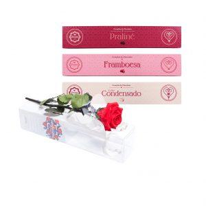Rosa no Tubo + Coleção Corações Recheados Variados