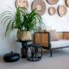 Vaso CUBO NALA, Bohemian Collection, Bamboo + Alocasia