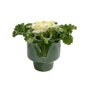Vaso vidrado com Brassica