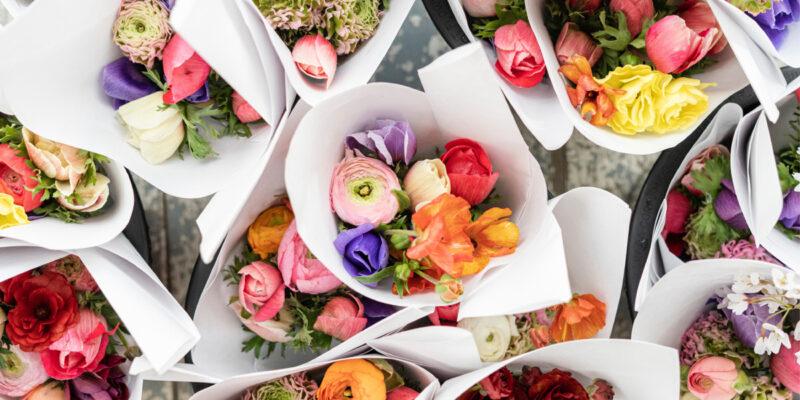 Cores e Flores para Mães Felizes