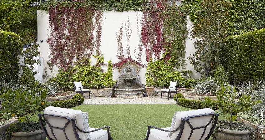 Trepadeiras para Jardins e Varandas coloridas e perfumadas!